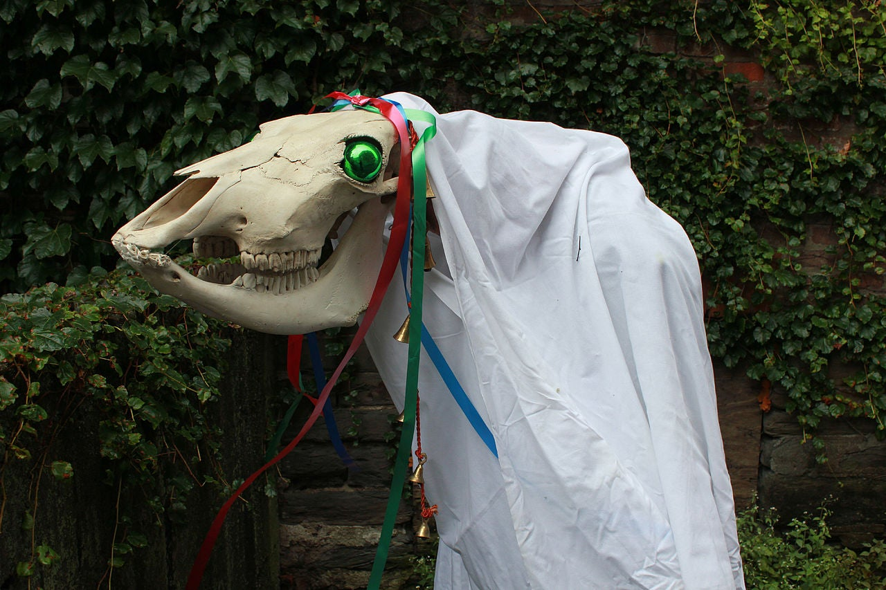 A Mari Lwyd, made from a horse's skull placed on a hobby horse stick. It wears a white cloth shroud wrapped around its neck and body.