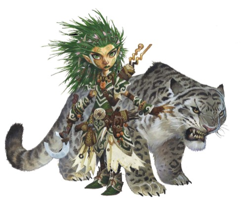 Linni, the iconic gnome druid, and her snow leopard companion Droogami.