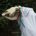 123120_MariLwyd_Preview