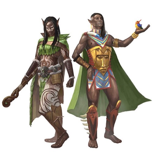 Two dark-skinned elves in tribal gear. One is female, the other male. They both wear capes. The female, on the left, has a belt with a pouch and is carrying a staff. The top of the staff resembles a coiled snake. The man has a colorful bird sitting in the palm of his outstretched left hand.