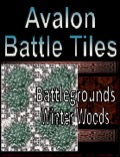 Avalon Battle Tiles, Winter Woods Battlegrounds PDF